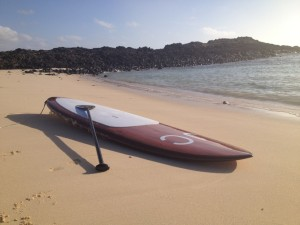 SUP Board mit Paddle